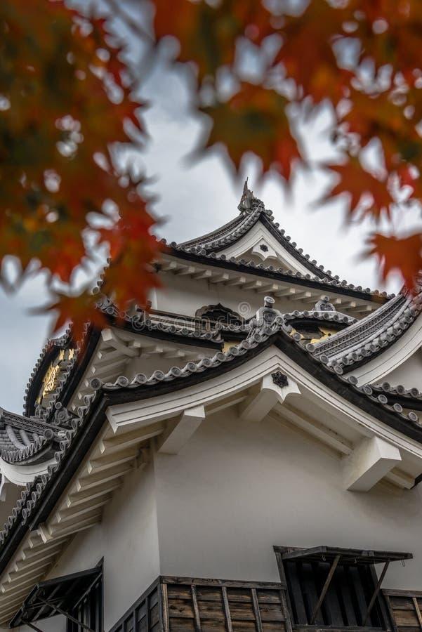 Hikone Castle-de herfst stock afbeelding