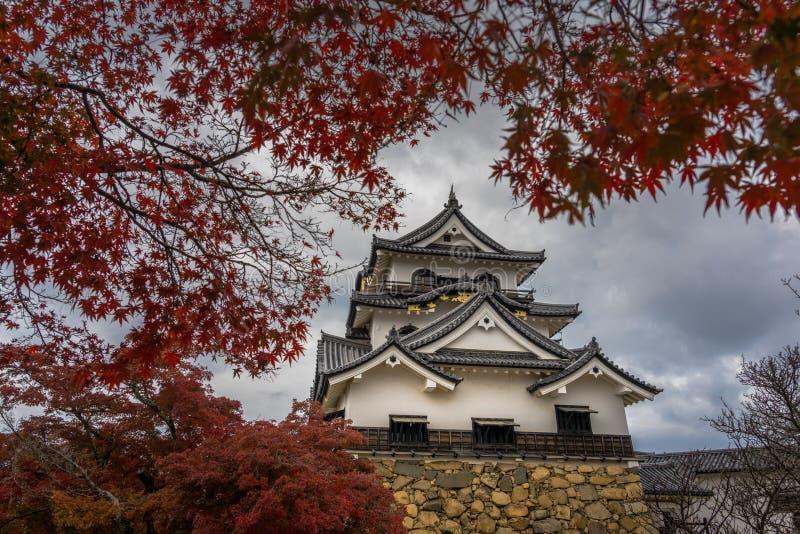 Hikone Castle-de herfst royalty-vrije stock fotografie