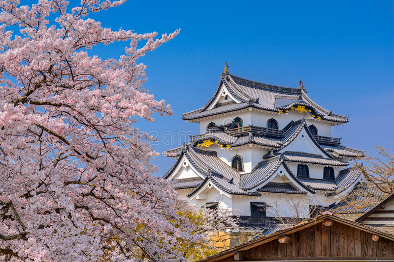 Hikone Castle in de Lente royalty-vrije stock foto