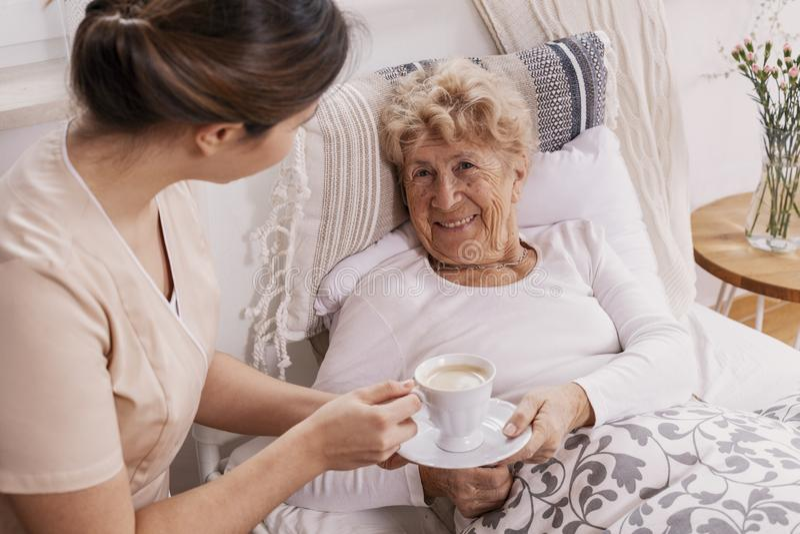 Hilfreicher Freiwilliger in dienendem Kaffee der beige Uniform zum älteren weiblichen Patienten lizenzfreies stockfoto