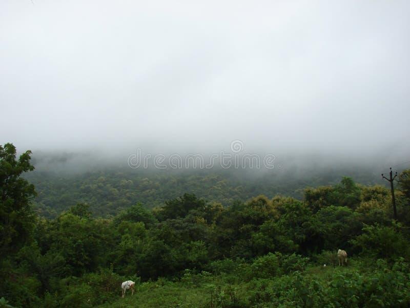 Hill και τα σύννεφα στοκ εικόνες