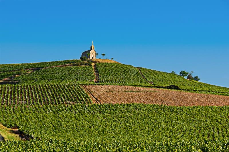 Hill του χωριού Fleurie κατά τη διάρκεια, Beaujolais, Γαλλία στοκ εικόνα