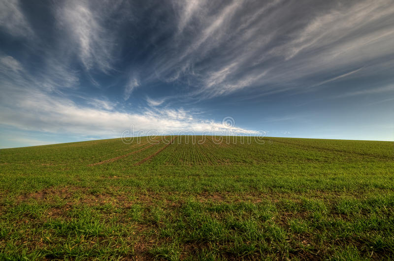 Download Hill stock image. Image of farming, fields, hill, ecology - 12324691