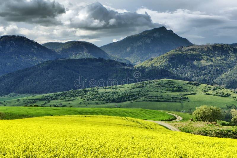 Hill Choc, Slovakia royalty free stock image
