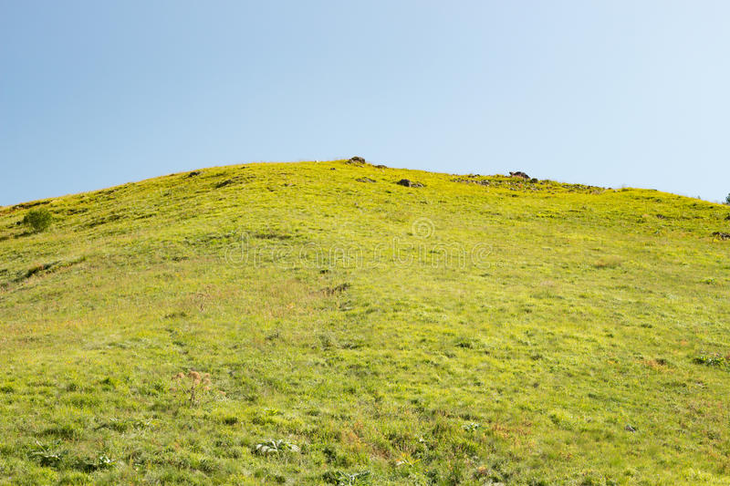 Hill covered with green grass and sky. In the daytime royalty free stock images