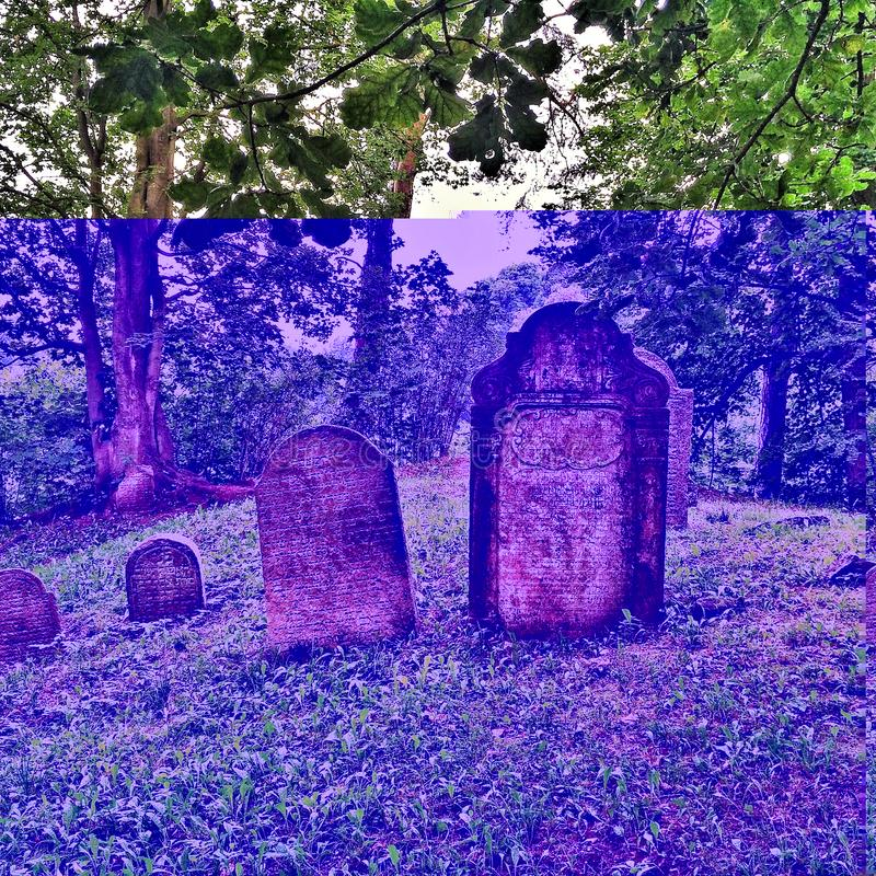 On A Hill In Czech Republic A Jewish Cemetery Stock Photo