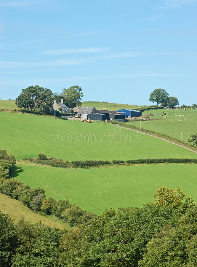 Hill Farm. A hill farm with house and barns, set in fields against a blue sky royalty free stock image