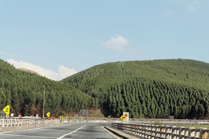 Download Hill Forest And Road Stock Images - Image: 905214