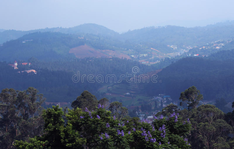 Hill landscape stock image