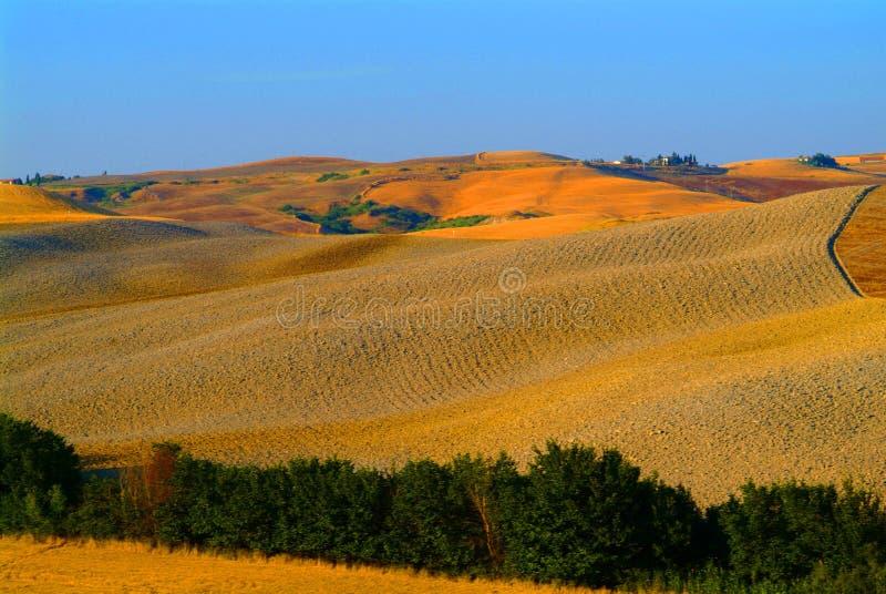Hill landscape tuscany royalty free stock photography