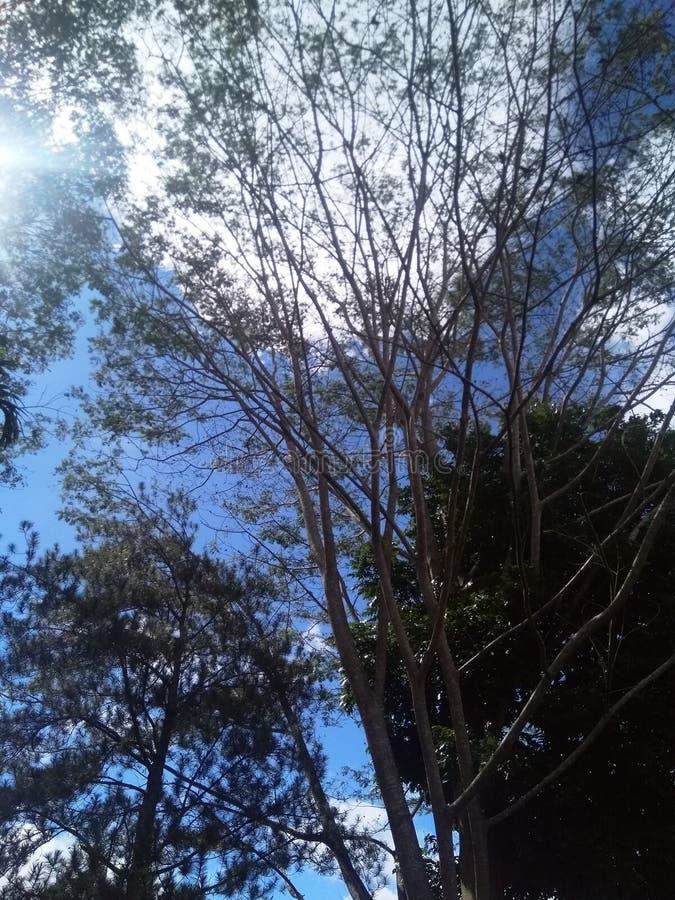 Hill Penuh Sungai στοκ φωτογραφίες