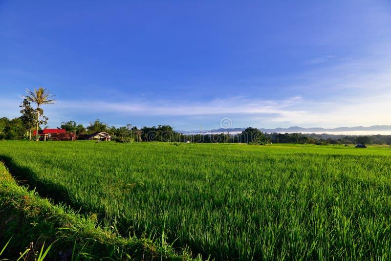Hill Takuruang οι περισσότερες όμορφες θέσεις που επισκέπτονται στην Ινδονησία στοκ εικόνα με δικαίωμα ελεύθερης χρήσης