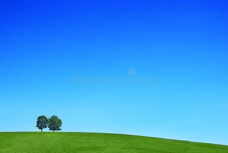 Download Hill trees stock photo. Image of scenery, couple, countryside - 26163784