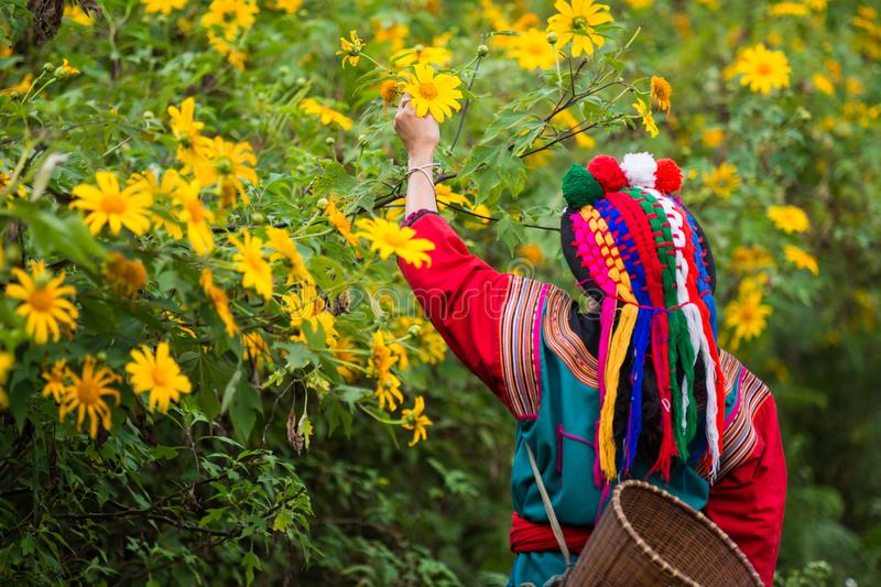 Local hill tribe in colorful costume dress stock photos