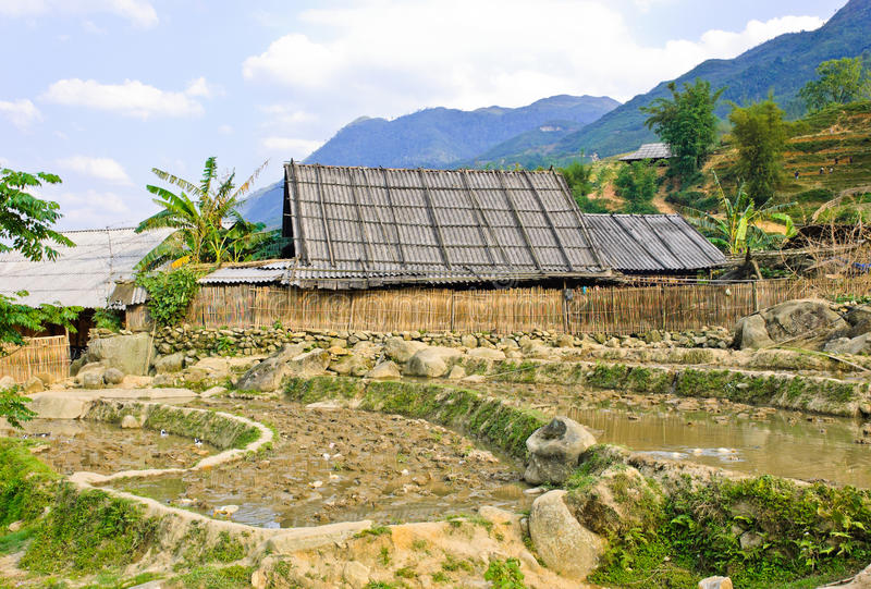 Hill tribe rural view. Landscape of rice crops in Sapa, Vietnam stock photos