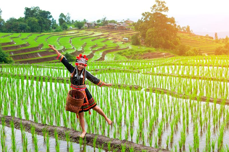 The hill tribe women in the landscape, mountains and fields have green trees at sunrise. Hill tribe woman in the landscape, mountains and fields have green trees royalty free stock photos