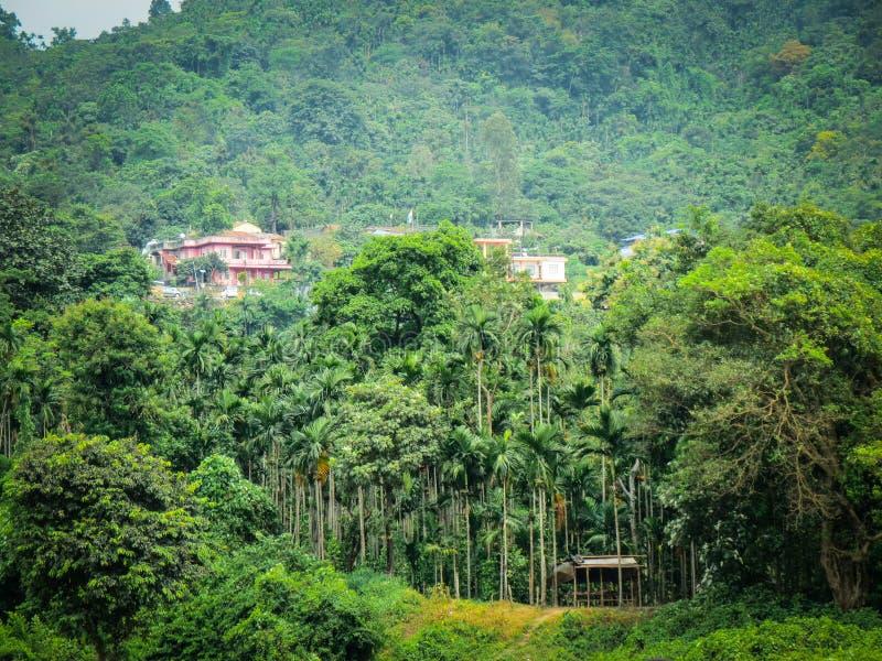 Village Bangladesh Stock Images - Download 1,276 Royalty