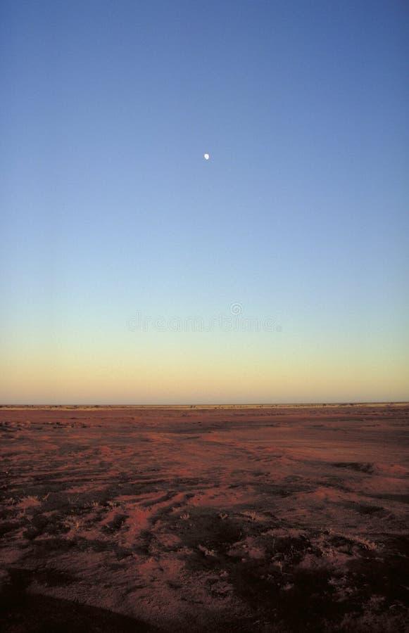 hill w australii obraz royalty free