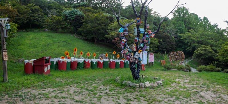 Hillcrest (navkullar) plats, Eco nöjesfält i den Daegu staden, Korea arkivbilder