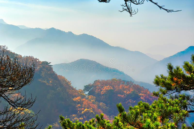 The hills autumnal scenery and sea of clouds stock photos