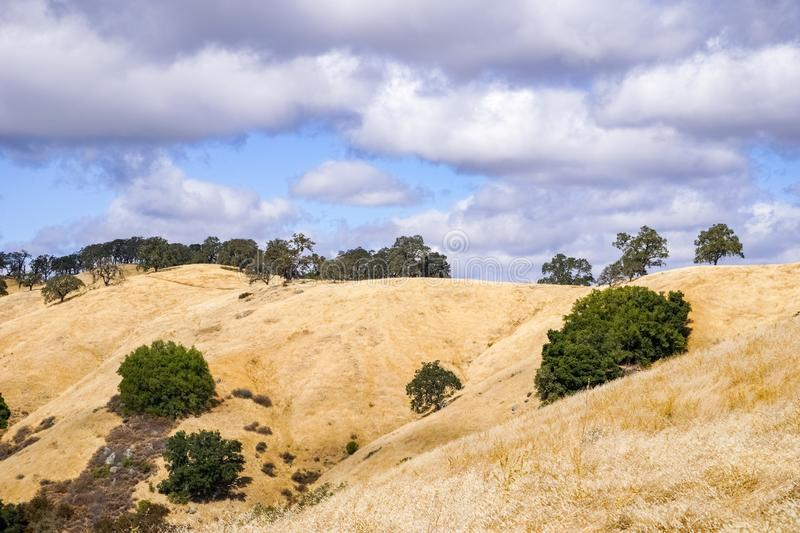 Hills covered in dry grass in Henry W. Coe Park State Park, San Francisco bay area, California stock photography