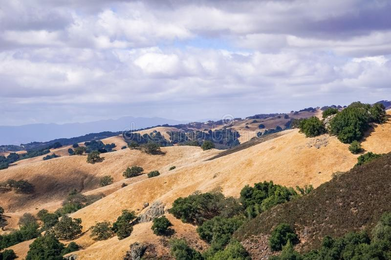 Hills covered in dry grass in Henry W. Coe Park State Park, San Francisco bay area, California royalty free stock photo