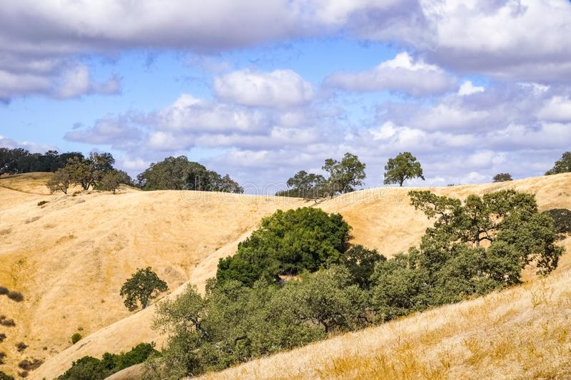Hills covered in dry grass in Henry W. Coe Park State Park, San Francisco bay area, California stock photos