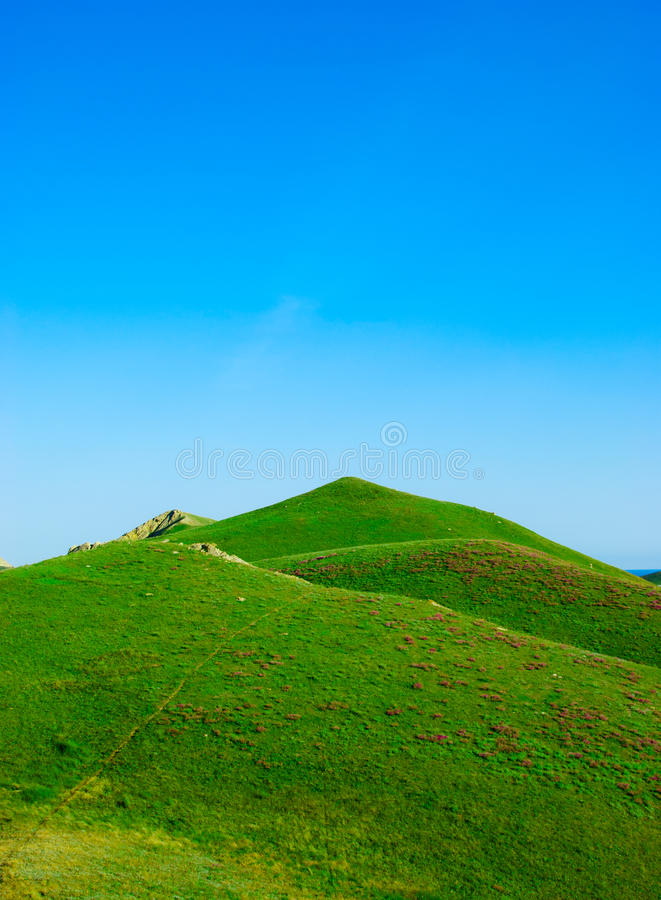 Download Hills Covered With A Green Grass Stock Image - Image: 14869909