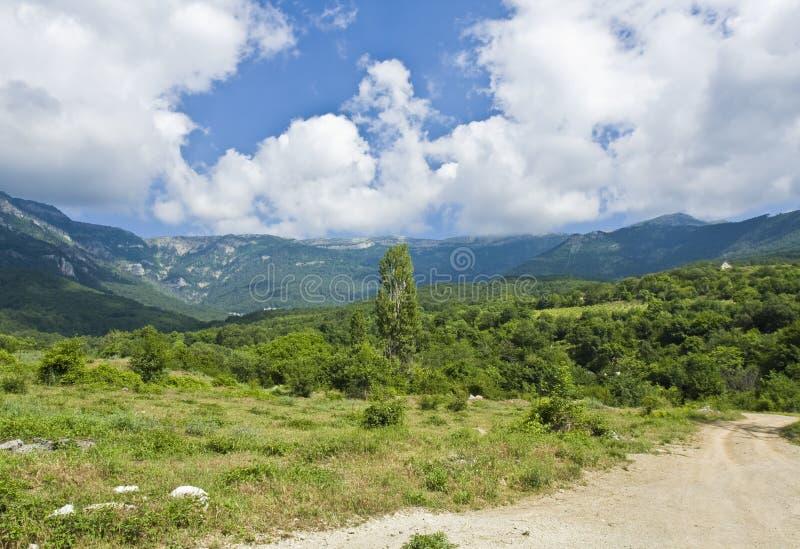 Download Hills, Crimea stock photo. Image of crimea, blue, plant - 25406200