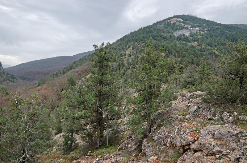 Hills in Crimea stock photography