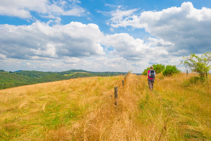 Hills of the Eifel National Park in sunlight. Hills of the Eifel National Park in summer stock images