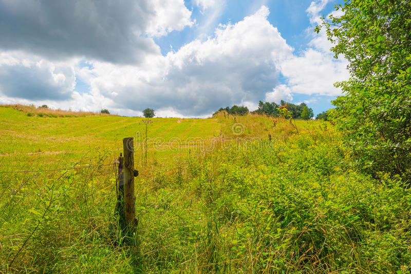 Hills of the Eifel National Park in sunlight. Hills of the Eifel National Park in summer royalty free stock photos