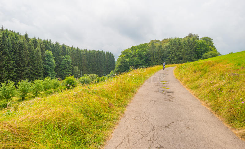 Hills of the Eifel National Park in sunlight. Hills of the Eifel National Park in summer royalty free stock photography