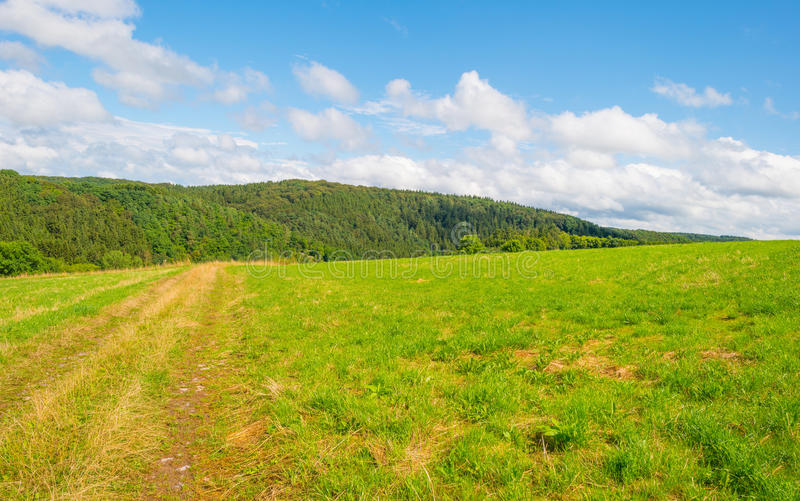 Hills of the Eifel National Park in sunlight. Hills of the Eifel National Park in summer royalty free stock photo