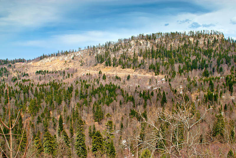 Download Hills and forest stock image. Image of cloud, peak, blue - 28526287