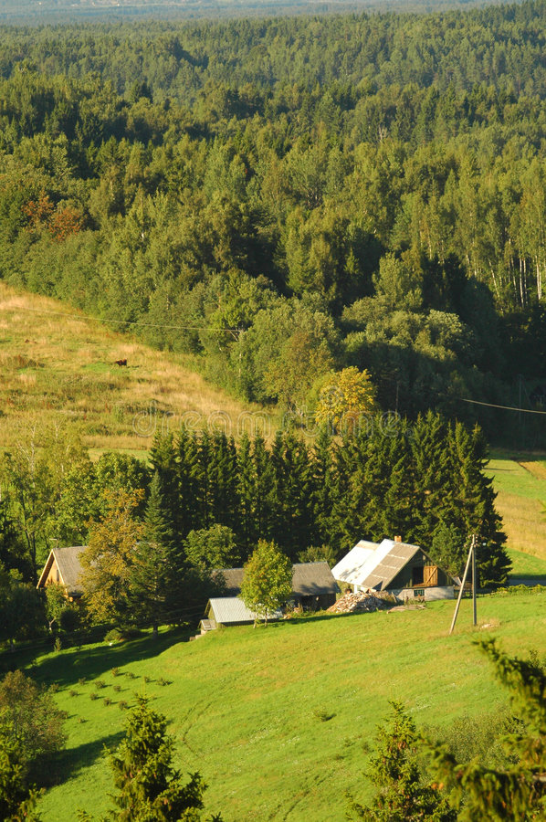 Hills and forests of Estonia stock photos