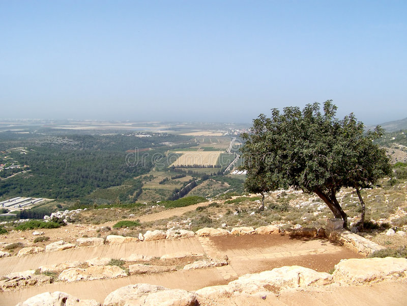 Hills of Galil royalty free stock photography
