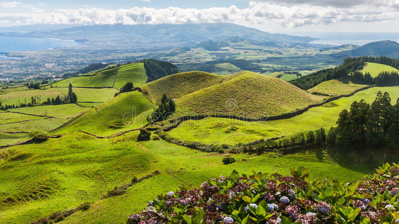 Hills landscape in Sao Miguel, Azores Islands royalty free stock photos