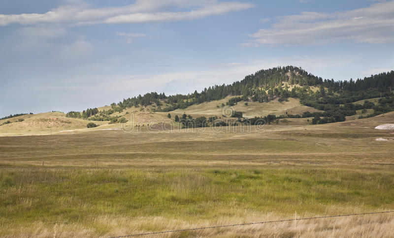 Hills and pine trees in the Black Hills of South Dakota royalty free stock photo