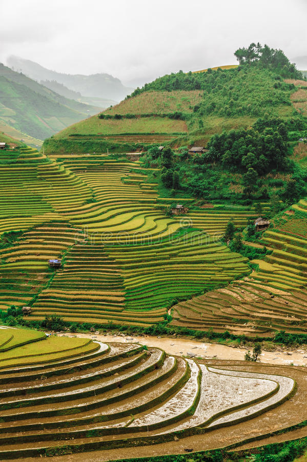 Hills of rice terraced fields. Stilt house on the rice terraced field with the sky and clouds in Mu Cang Chai, Vietnam royalty free stock images