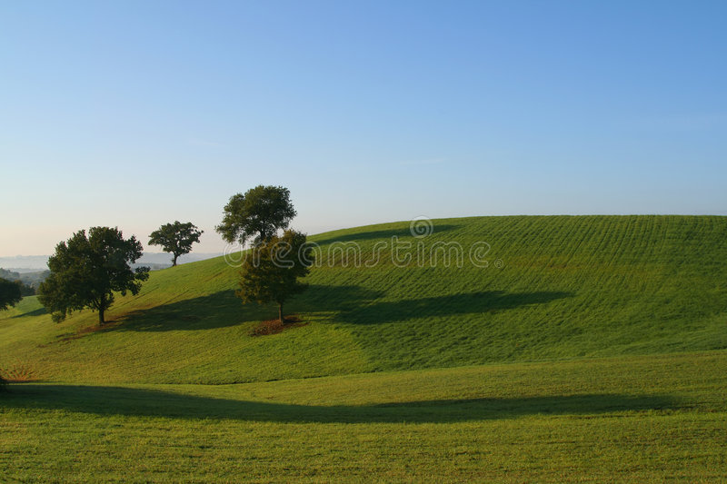 Hills and trees royalty free stock photography