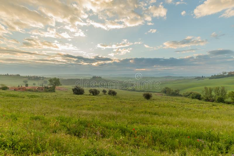 Hills of Tuscany: Val d`Orcia in the morning with the lights of dawn. Siena, Tuscany, Italy stock images