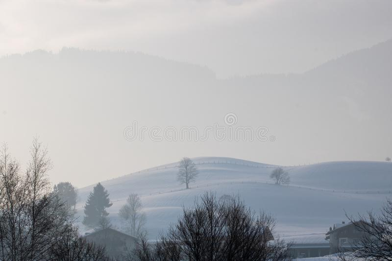 Winter hills with trees and houses royalty free stock photography