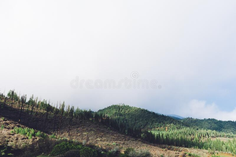 Hillside In Cloudy Weather Free Public Domain Cc0 Image
