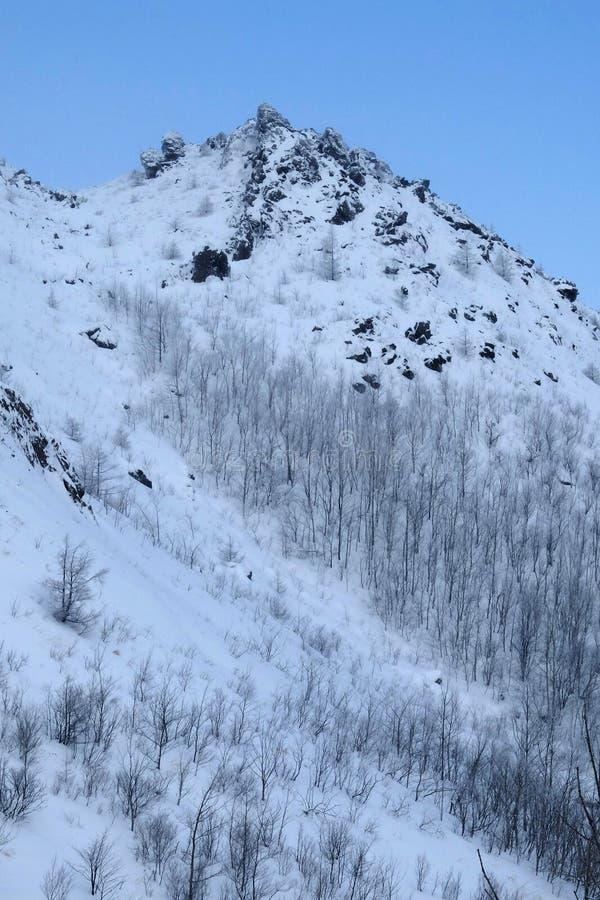 Hillside a couvert par le fond de neige en ciel bleu photo libre de droits