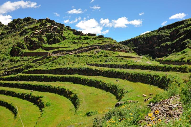 Hillside terraces in Urubamba Valley, Peru royalty free stock photography