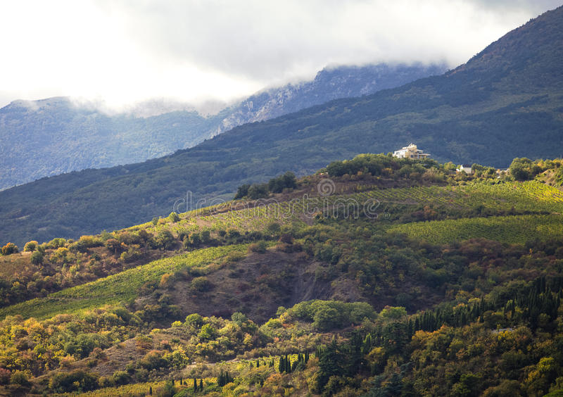 Hillside vineyards with white house in Crimea royalty free stock photos