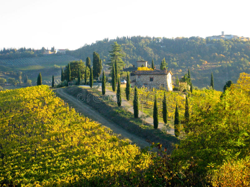 Hilltop Villa & Vineyards - Tuscany, Italy stock photography