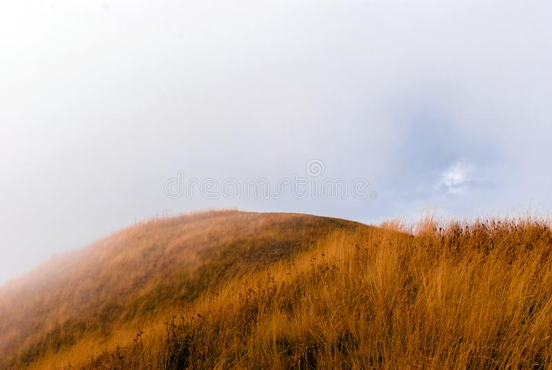 Hilltop in the fog. Hilltop with yellow autumn grass in the fog royalty free stock photo