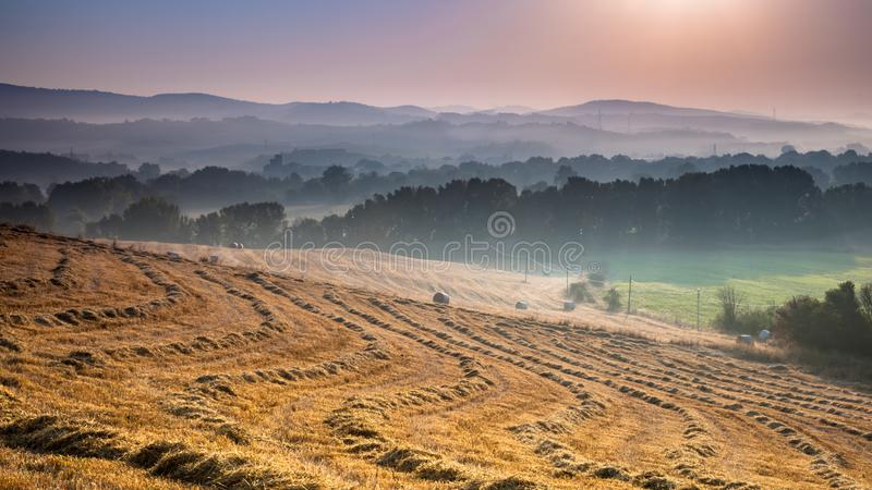 Hilly Farmland Landscape. Near Pisa on a Foggy Morning in Tuscany, Italy royalty free stock photography